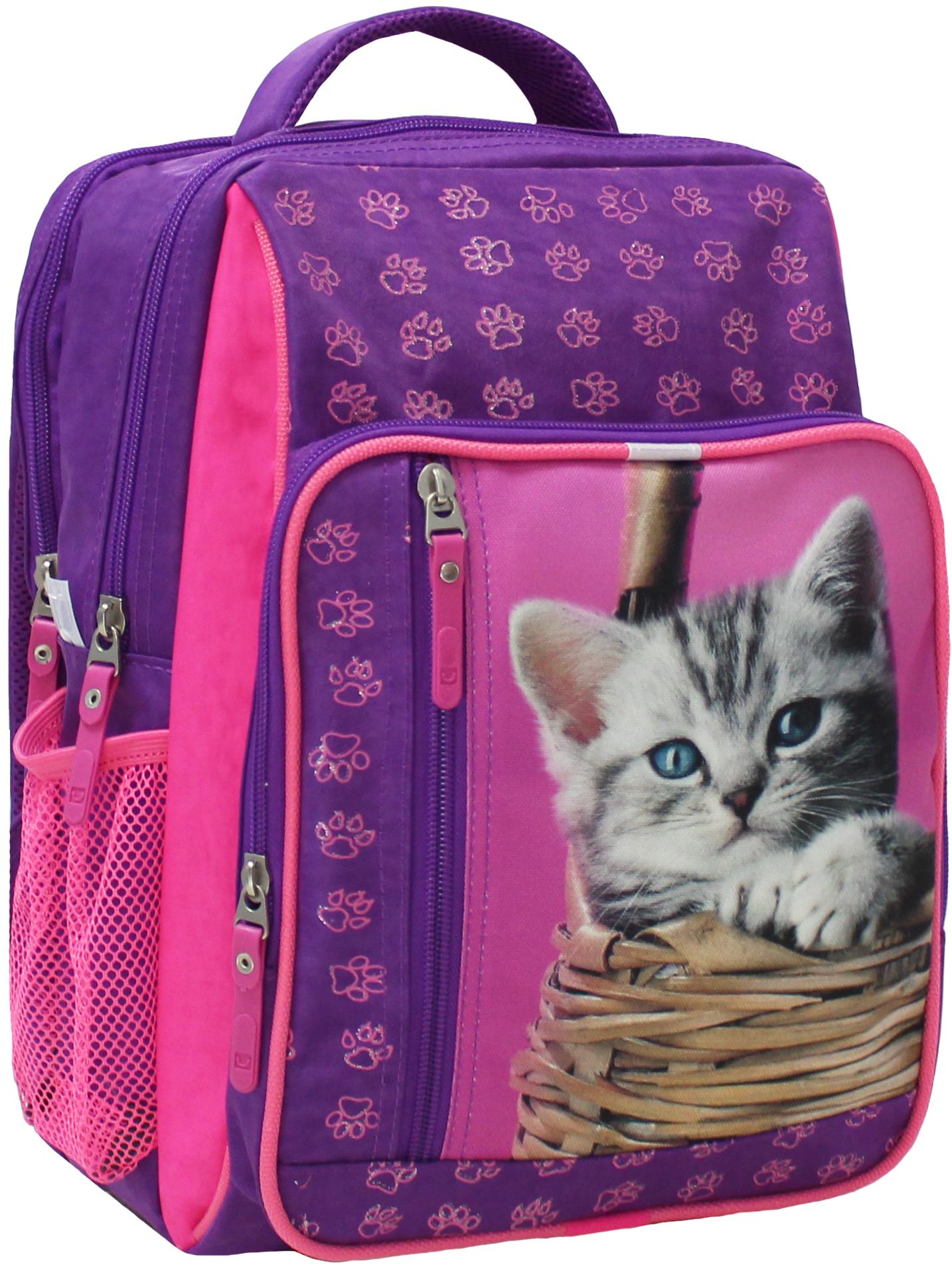 Школьные рюкзаки Рюкзак школьный Bagland Школьник 8 л. 339 фiолетовий 58 д (00112702) IMG_5266.JPG