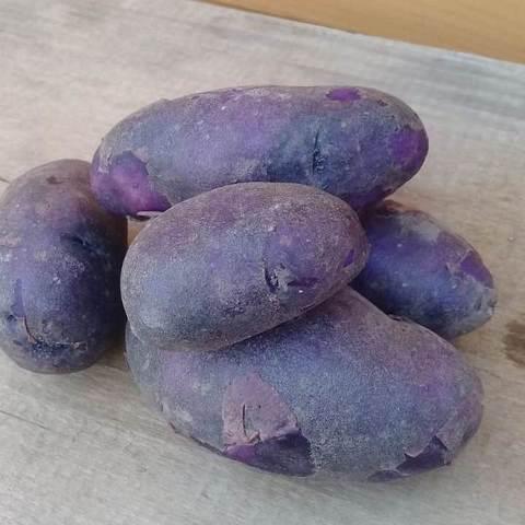 Картофель сорт Василек БИО (Васильки), кг