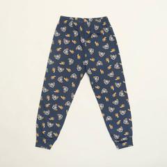 Детские мужские брюки пижамные WB E21K-93D101