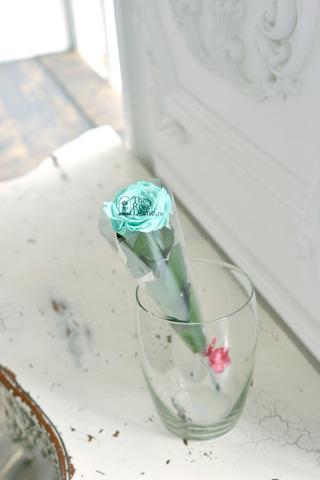 Роза на стебле Premium Оптом Высота*Бутон (37см*5-6см) Цвет тиффани