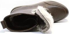 Коричневые ботинки с мехом женские зимние Studio27 576c Broun.