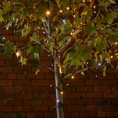 Дерево из гирлянды нить теплый