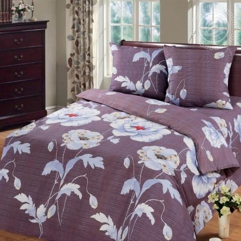 Комплект постельного белья Капучино Бязь 220 см.