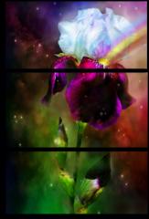 """Модульная картина """"Яркие цветы"""""""