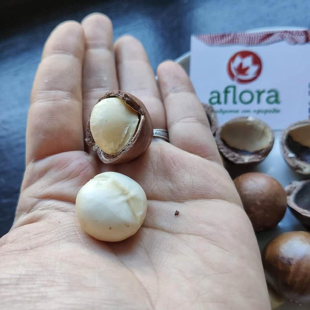 Фотография Макадамия в скорлупе ( Вьетнам) / 1 кг купить в магазине Афлора