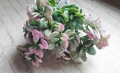 Искусственная зелень Брусника снежная, букет 5 веток, 31 см.