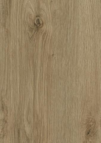 Ламинат Oak Evoke Trend   K4421   KAINDL