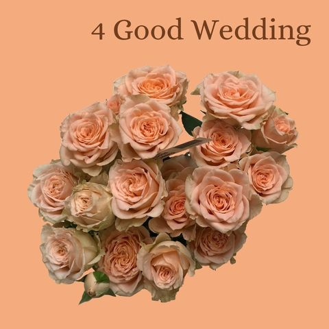Фор гуд (4 good wedding)