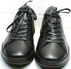 Мужские низкие кеды кроссовки мужские черные осень весна Ikoc 1725-1 Black.