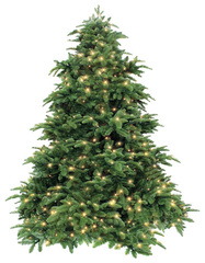 Triumph tree ель Нормандия зеленая (лампы) 1.85 м