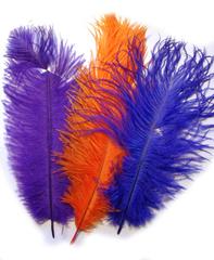 Перья страуса  декоративные БРАК! 25-30 см. (цена за 1 шт.) (выбрать цвет)