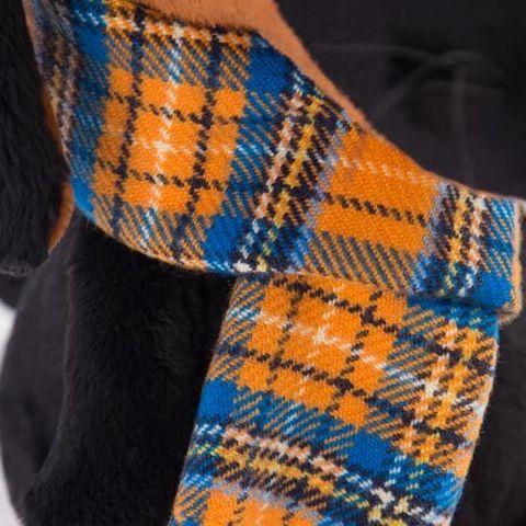 Пес Ваксон в шарфе