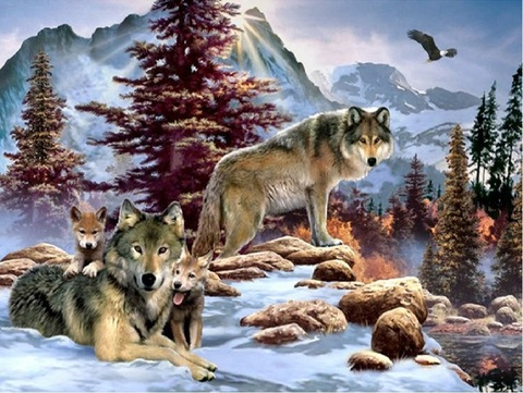Алмазная Мозаика + Багет 40x50 Зимнее семейство волков (арт. DA-0338)