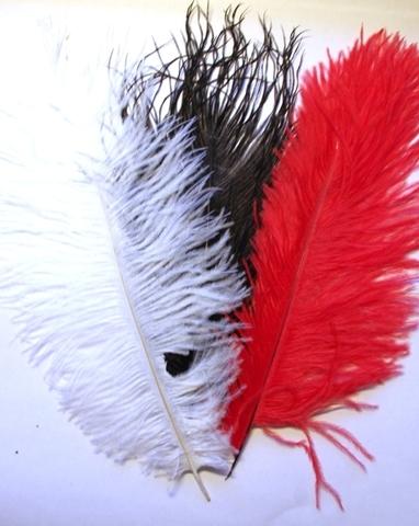 Перья страуса  декоративные БРАК! 30-35 см.  (цена за 1 шт.) (выбрать цвет)