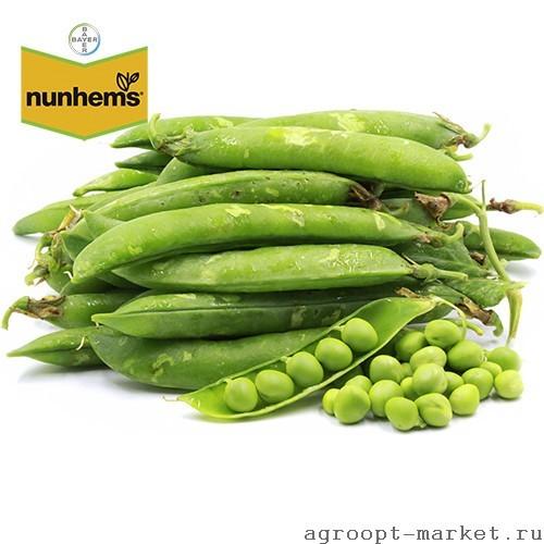 Nunhems Бастион семена гороха (Nunhems / Нюнемс) бастион.jpg