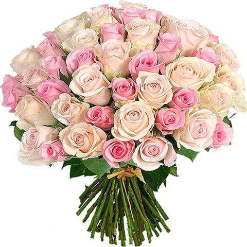 Букет из 51 розы в ассортименте Кения (50см )