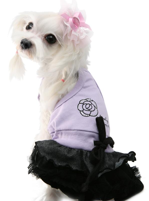 купить сарафан для собаки