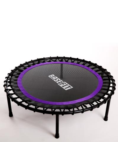 Батут TR-501 101 см, фиолетовый