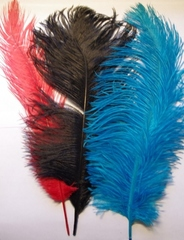 Перья страуса  декоративные БРАК! 35-40 см. (цена за 1 шт.) (выбрать цвет)