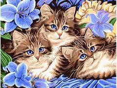Картина раскраска по номерам 30x40 Три котенка в синих цветах