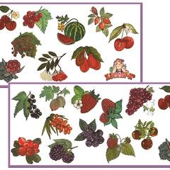 Развивающий набор наклеек: Садовые и лесные ягоды