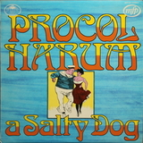 Procol Harum / A Salty Dog (LP)
