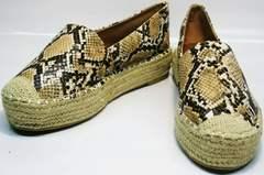 Туфли на платформе Lily shoes Q38snake.