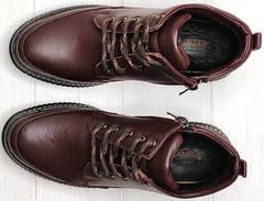 Осенние женские ботинки натуральная кожа Evromoda 535-2010 S.A. Dark Brown.