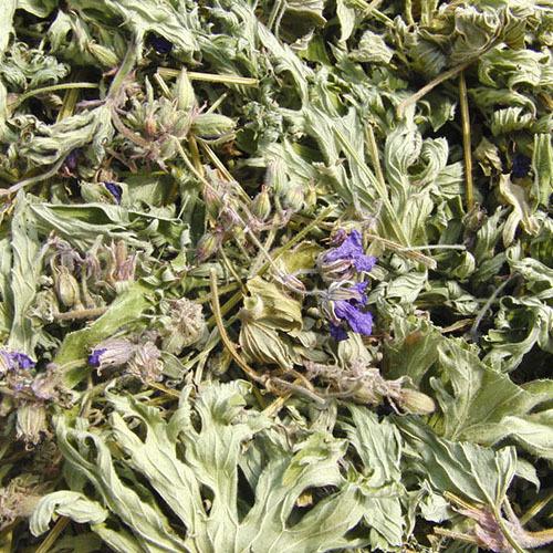 Травы Герань луговая geranium-146.jpg