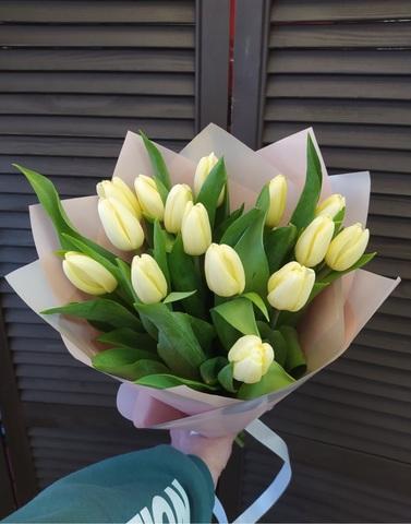 15 тюльпанов в оформлении #1665