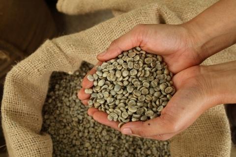 Зерна зеленого кофе купить Иркутск вьетнамский кофе