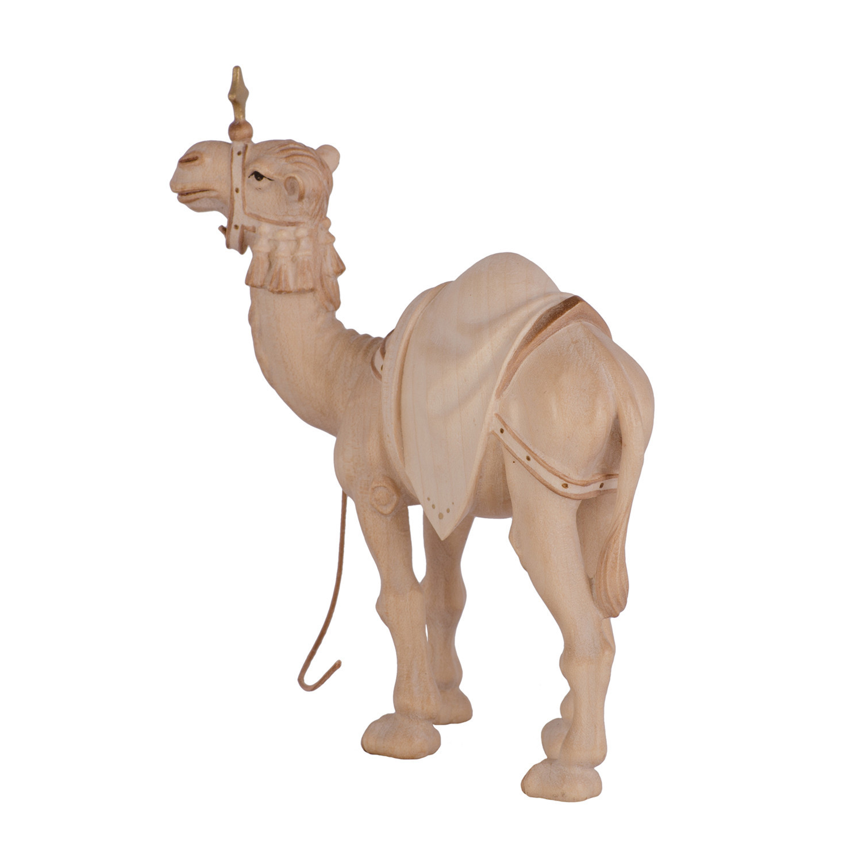 Седло верблюда
