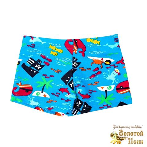 Плавки купальные мальчику (2-7) 210516-СМ44092