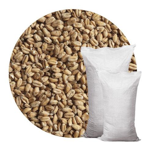 Солод «Пшеничный» Курск 25 кг