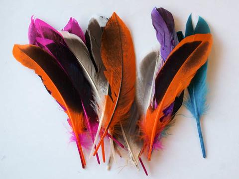 Перья утки декоративные БРАК ,  длина ок. 10-15 см. (выбрать цвет)