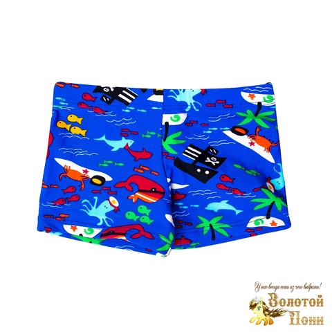 Плавки купальные мальчику (2-7) 210516-СМ44093