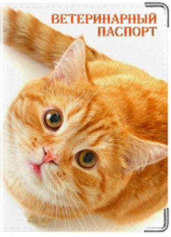 """Обложка для ветеринарного паспорта """"Рыжик"""""""