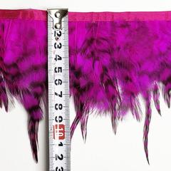 Купить оптом пестрые перья Петуха на ленте Fuchsia ярко-розовые