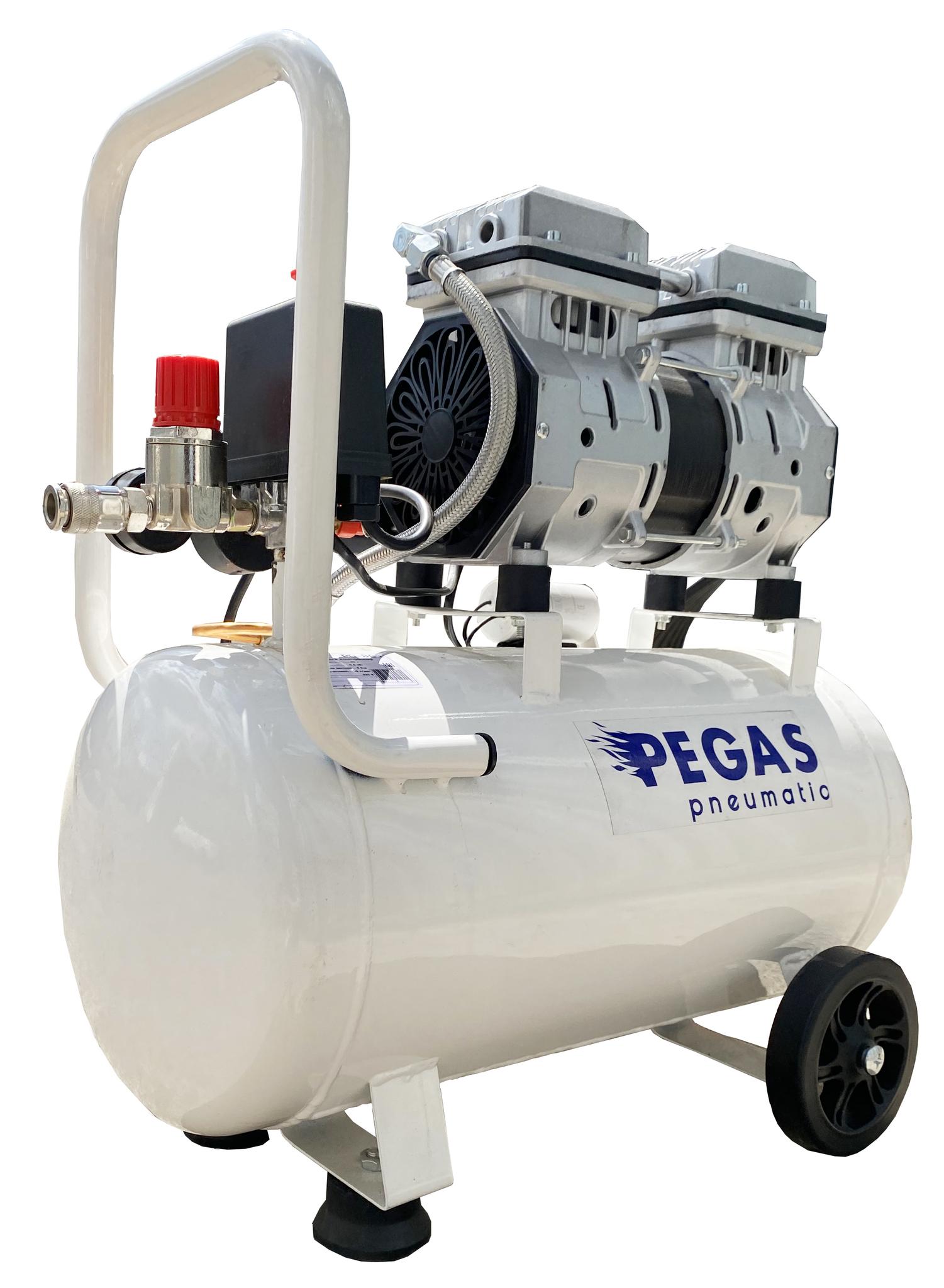 Pegas Компрессор PG-1100/безмасляный. pegas_800.jpg