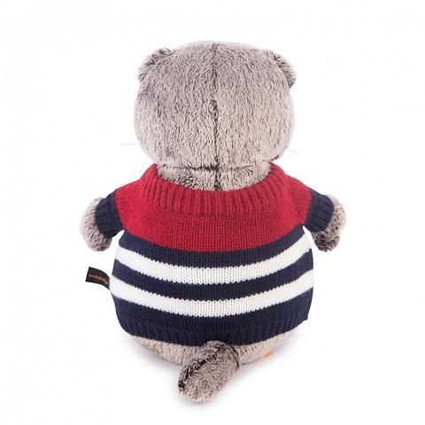 Кот Басик в морском свитере