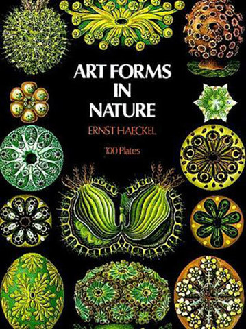 9780486229874 - Art Forms in Nature