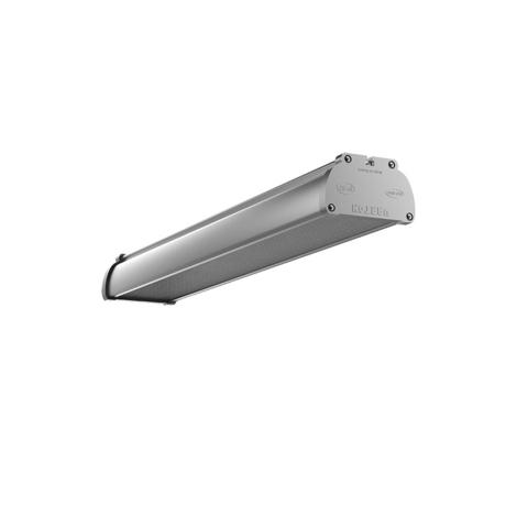 Аварийные светодиодные светильники для промышленных предприятий Iron EM 600 IP67 Varton – общий вид