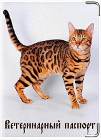 """Обложка для ветеринарного паспорта кошки """"К 1"""""""