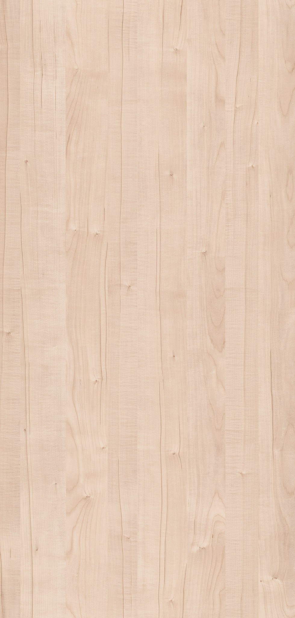 4104 VISBY MAPLE