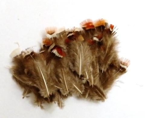 Перья фазана, 5-8 см. 10 или 100 шт.