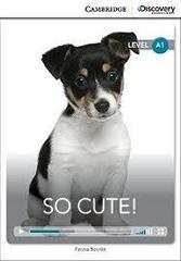 So Cute! Bk +Online Access