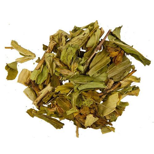 Травы Горечавка, лист gentiana-leaf-164.jpg