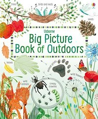 Big Picture Book: Outdoors (HB)