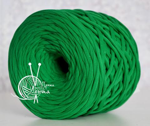 Пряжа Лента Зеленый