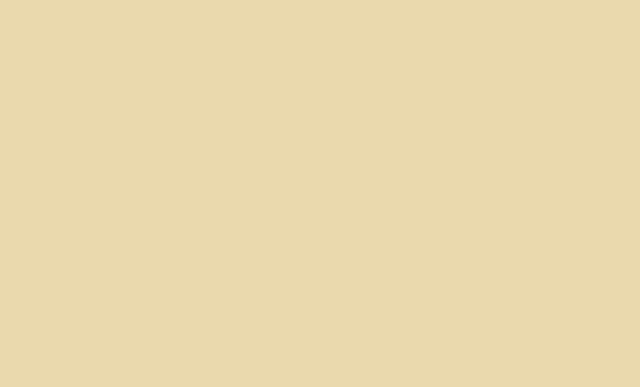 Краска аэрозольная RAL 1015 (Светлая слоновая кость)